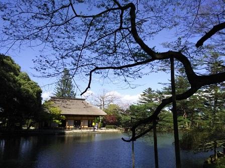 庭園 ④.jpg